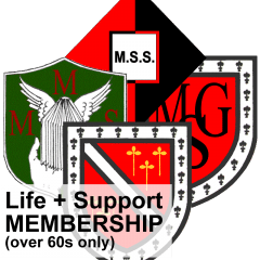 Life + Support